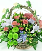 Click to view Flower Baskets