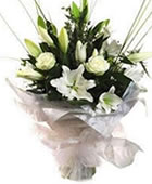 Click to view Hand Tied Aqua